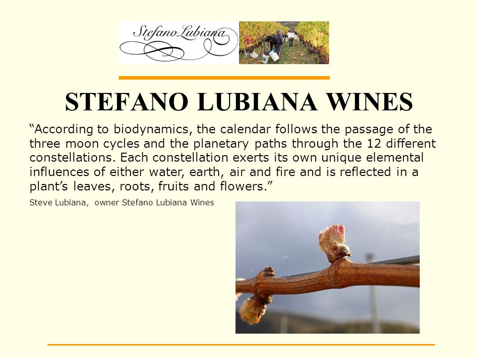 STEFANO LUBIANA WINES According to biodynamics, the calendar follows the passage of the three moon cycles and the planetary paths through the 12 different constellations.