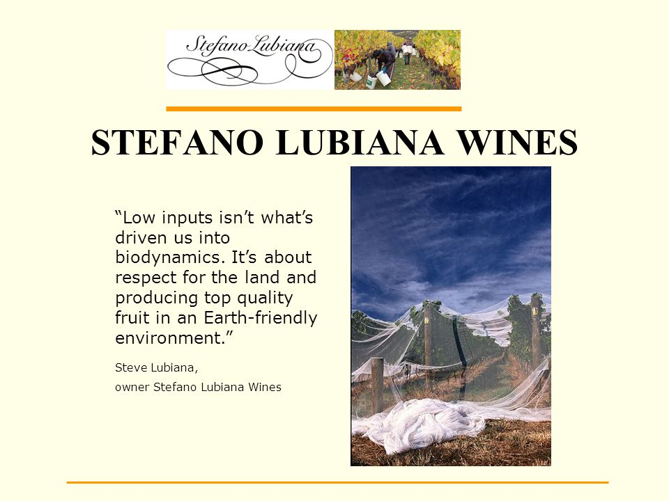 STEFANO LUBIANA WINES Low inputs isn't what's driven us into biodynamics.