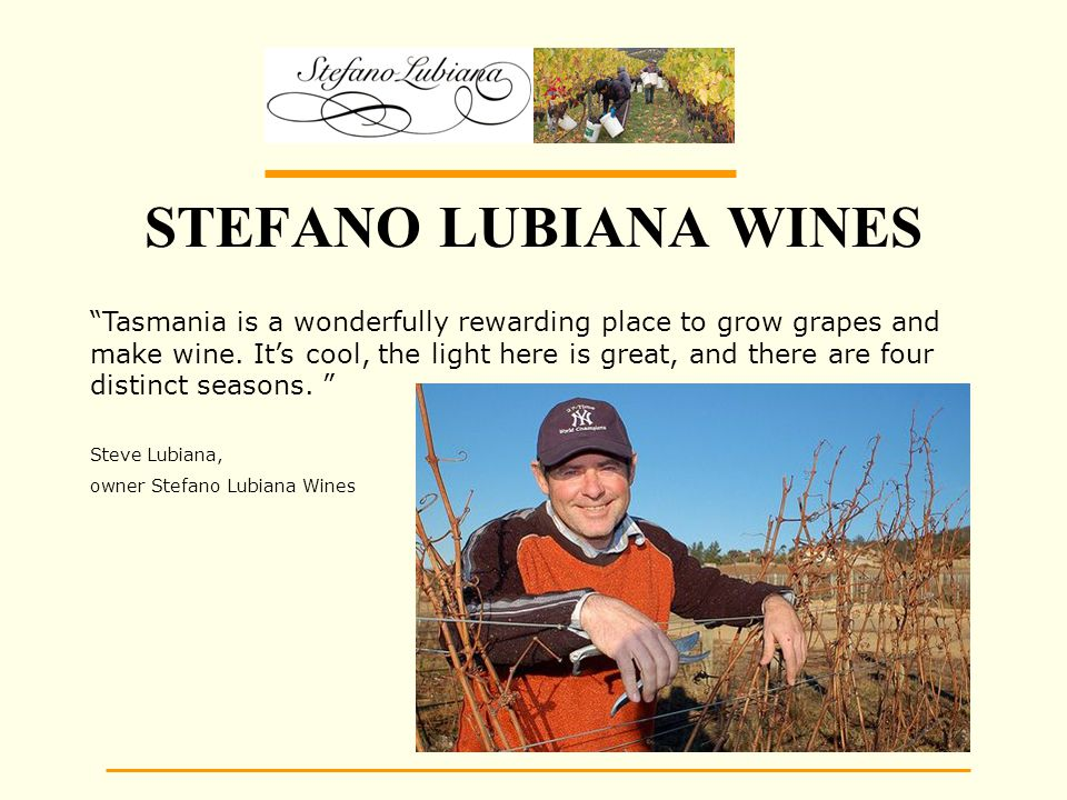 STEFANO LUBIANA WINES Tasmania is a wonderfully rewarding place to grow grapes and make wine.