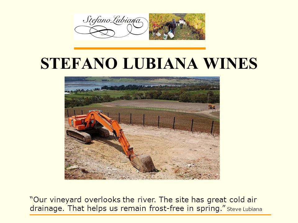STEFANO LUBIANA WINES Our vineyard overlooks the river.