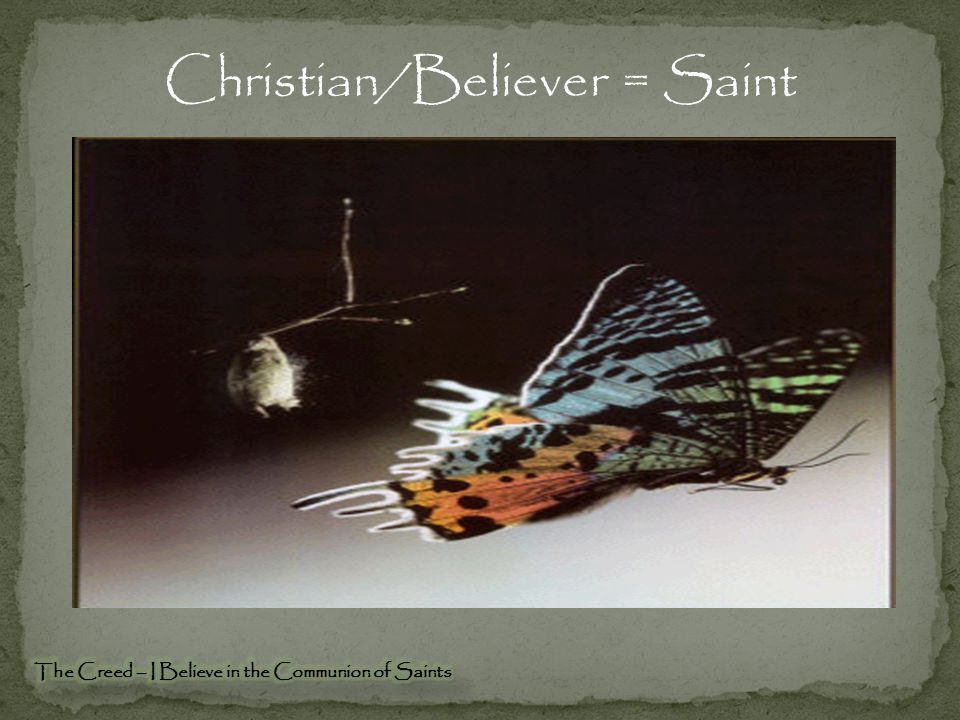 Christian/Believer = Saint