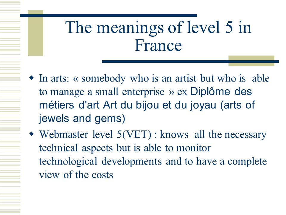 The meanings of level 5 in France  In arts: « somebody who is an artist but who is able to manage a small enterprise » ex Diplôme des métiers d art Art du bijou et du joyau (arts of jewels and gems)  Webmaster level 5(VET) : knows all the necessary technical aspects but is able to monitor technological developments and to have a complete view of the costs
