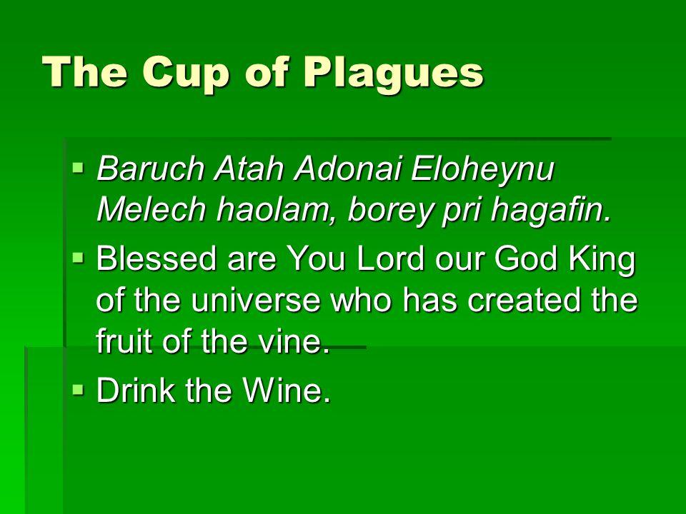 The Cup of Plagues  Baruch Atah Adonai Eloheynu Melech haolam, borey pri hagafin.
