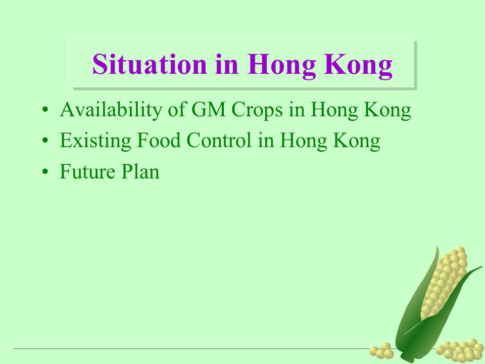 Situation in Hong Kong Availability of GM Crops in Hong Kong Existing Food Control in Hong Kong Future Plan