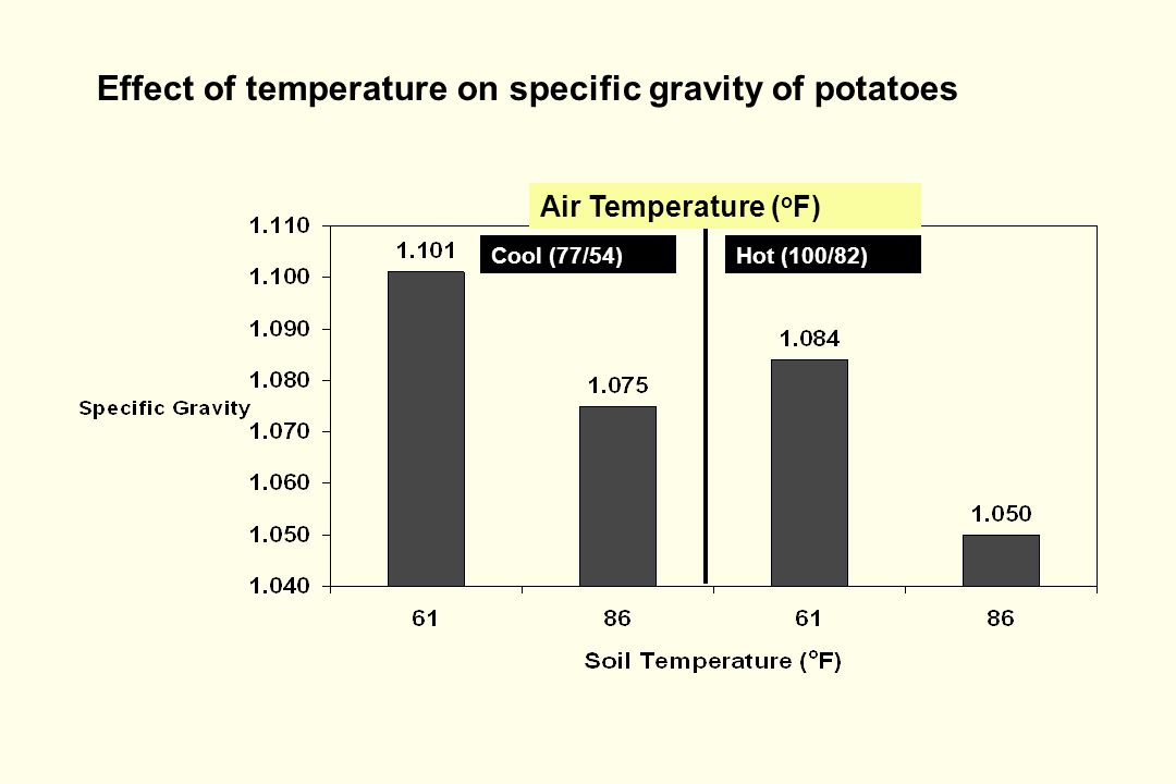 Effect of temperature on specific gravity of potatoes Air Temperature ( o F) Cool (77/54)Hot (100/82)