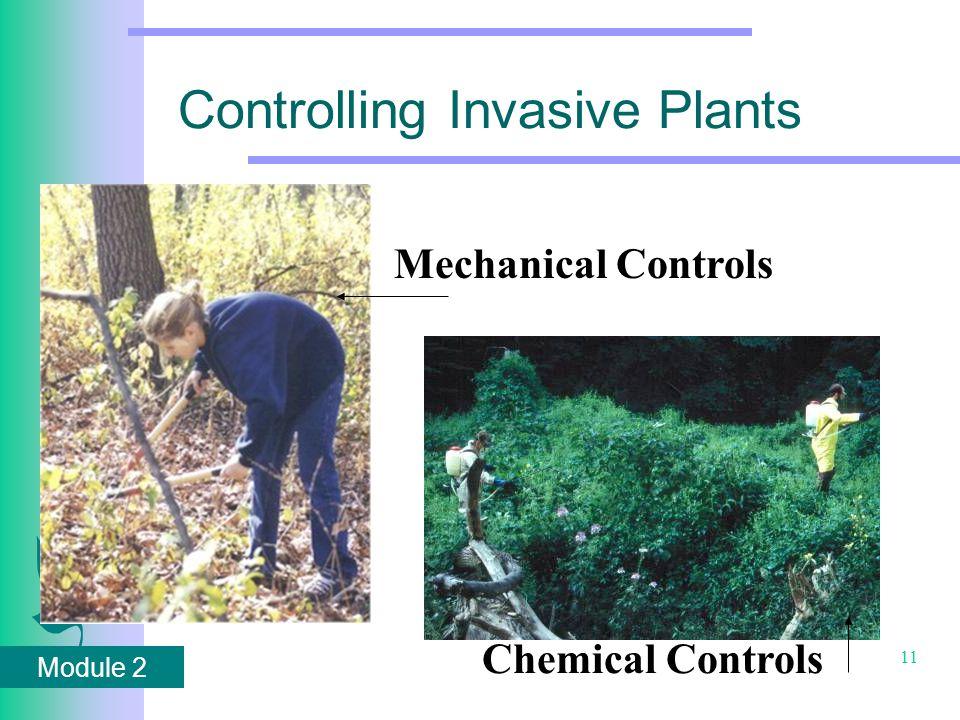 Module 2 11 Controlling Invasive Plants Mechanical Controls Chemical Controls