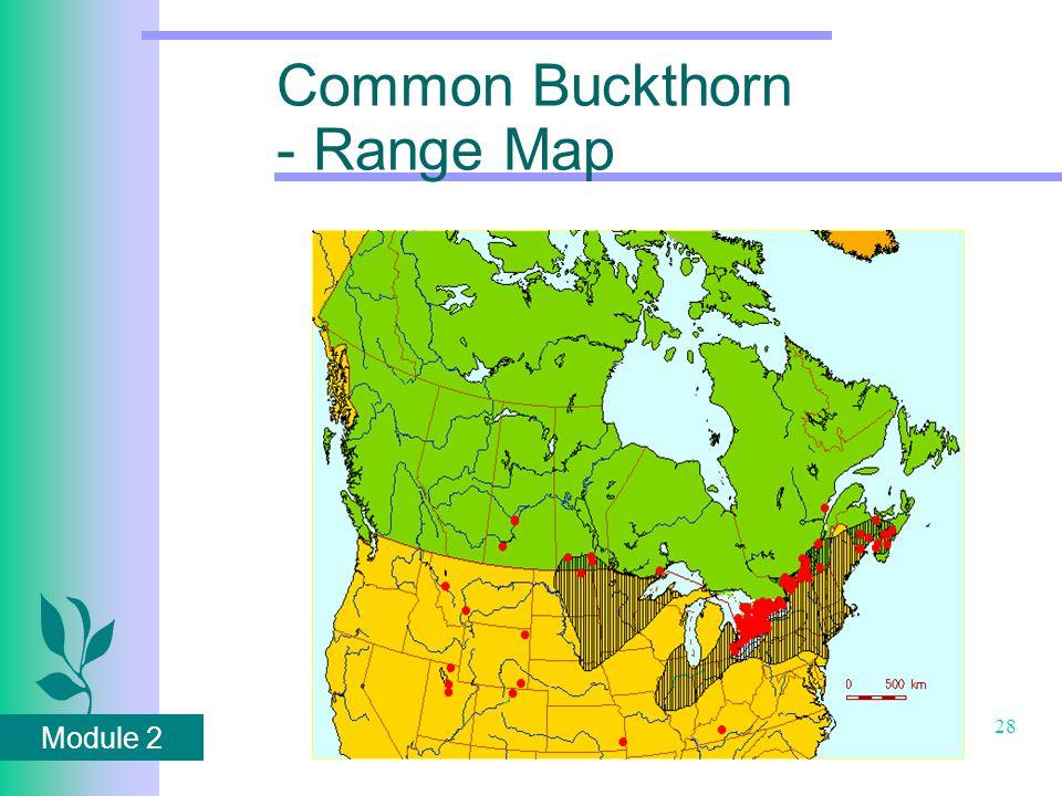 Module 2 28 Common Buckthorn - Range Map