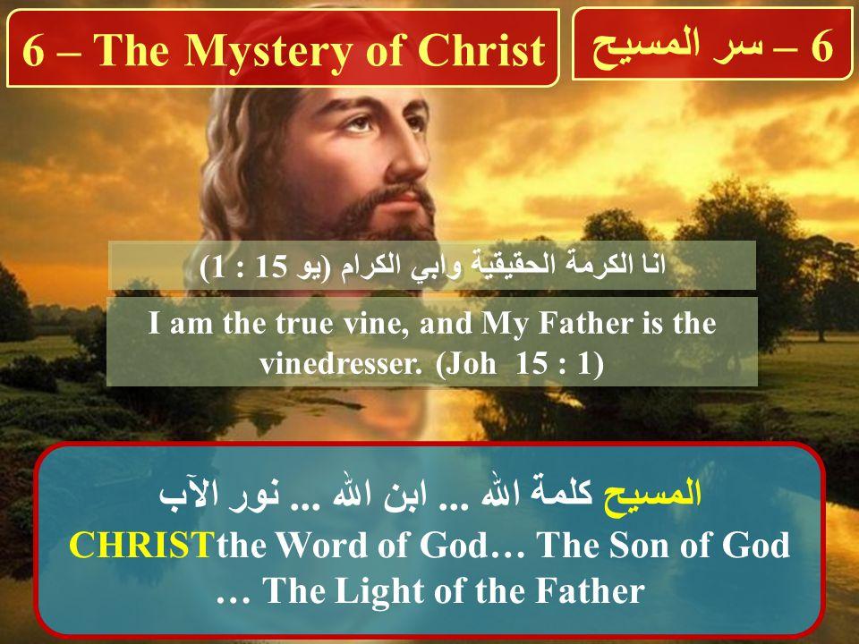 انا الكرمة الحقيقية وابي الكرام (يو 15 : 1) I am the true vine, and My Father is the vinedresser.