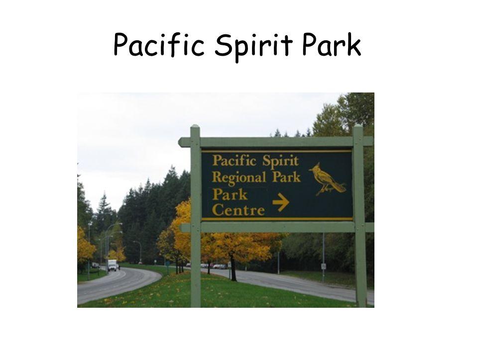 Pacific Spirit Park