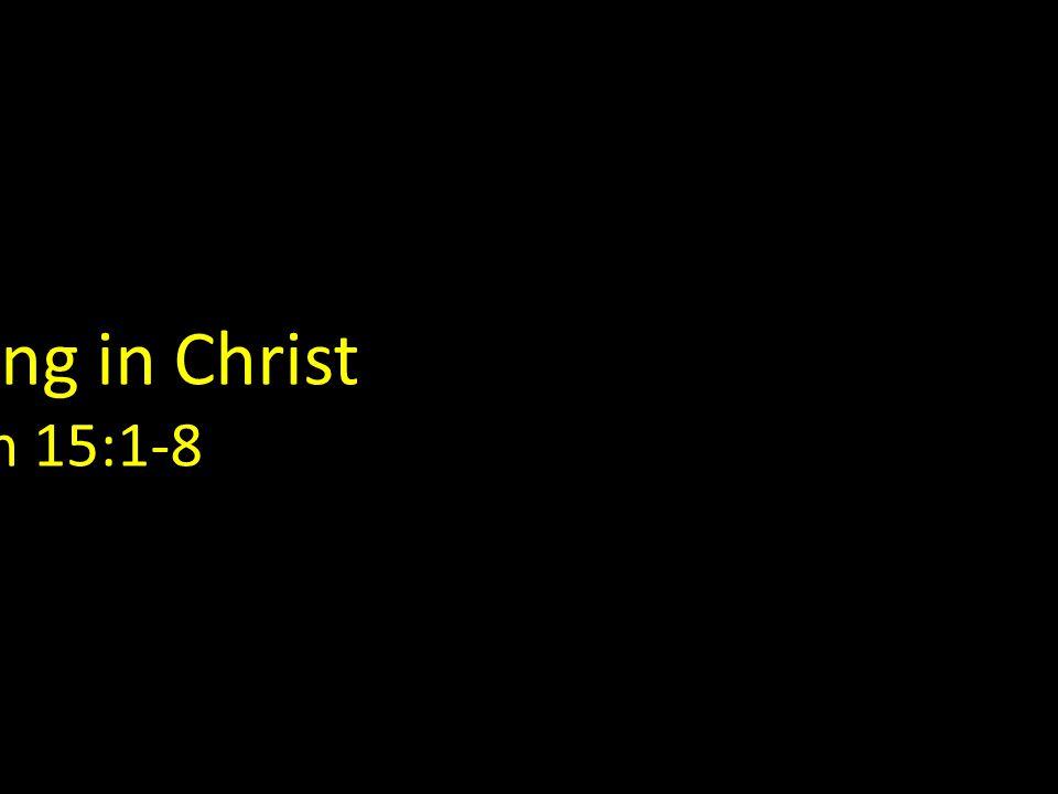 Remaining in Christ John 15:1-8