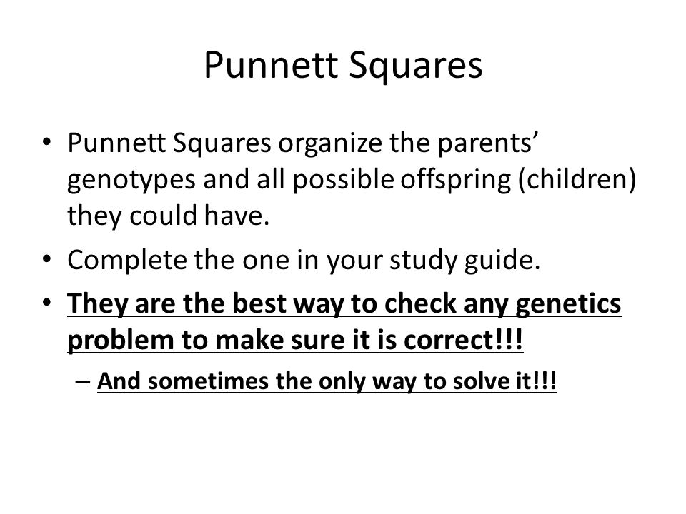 Punnett Squares Punnett Squares organize the parents' genotypes and all possible offspring (children) they could have. Complete the one in your study
