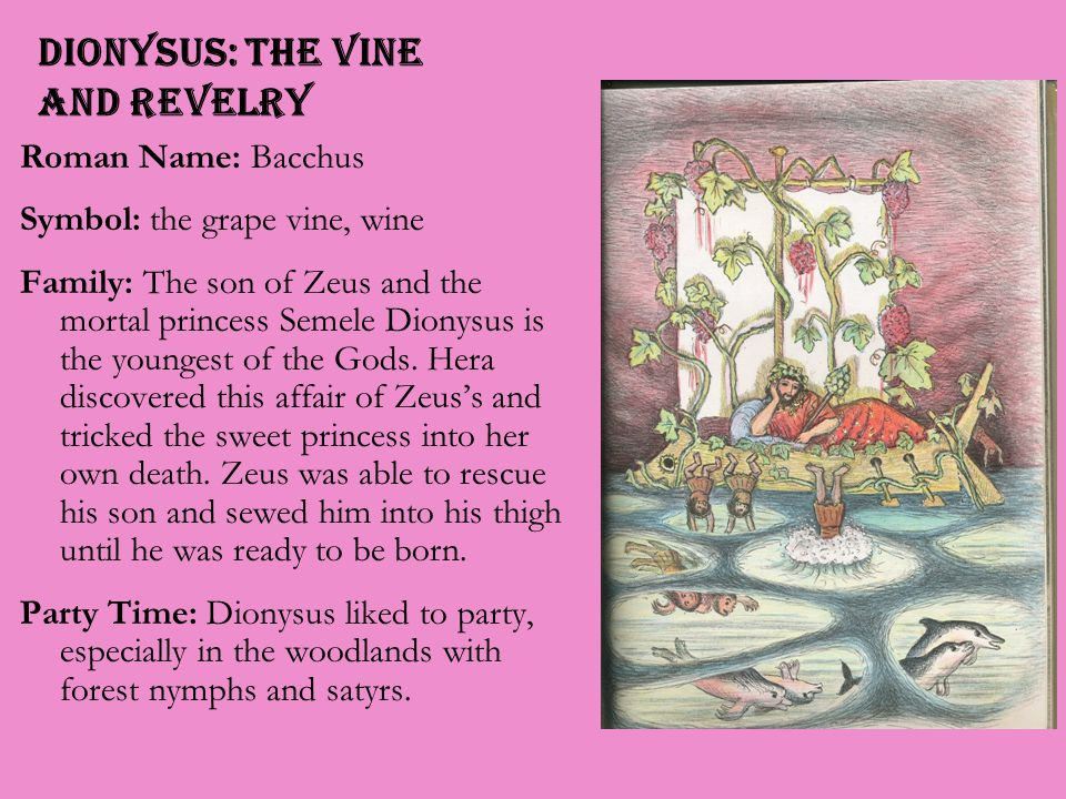 Dionysus: the Vine and Revelry Roman Name: Bacchus Symbol: the grape vine, wine Family: The son of Zeus and the mortal princess Semele Dionysus is the youngest of the Gods.