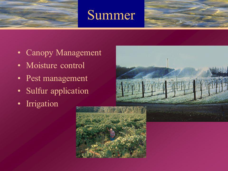 Summer Canopy Management Moisture control Pest management Sulfur application Irrigation