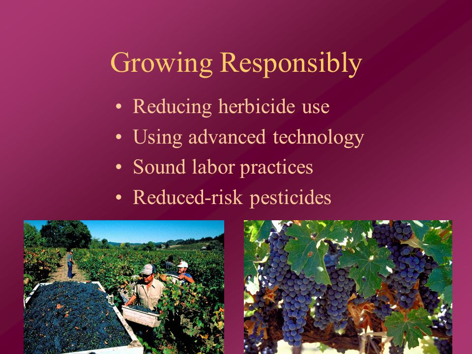 Growing Responsibly Reducing herbicide use Using advanced technology Sound labor practices Reduced-risk pesticides