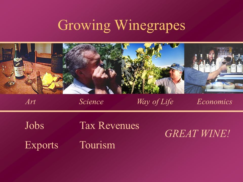 Growing Winegrapes ArtWay of LifeEconomics Jobs Exports Tax Revenues Tourism GREAT WINE! Science