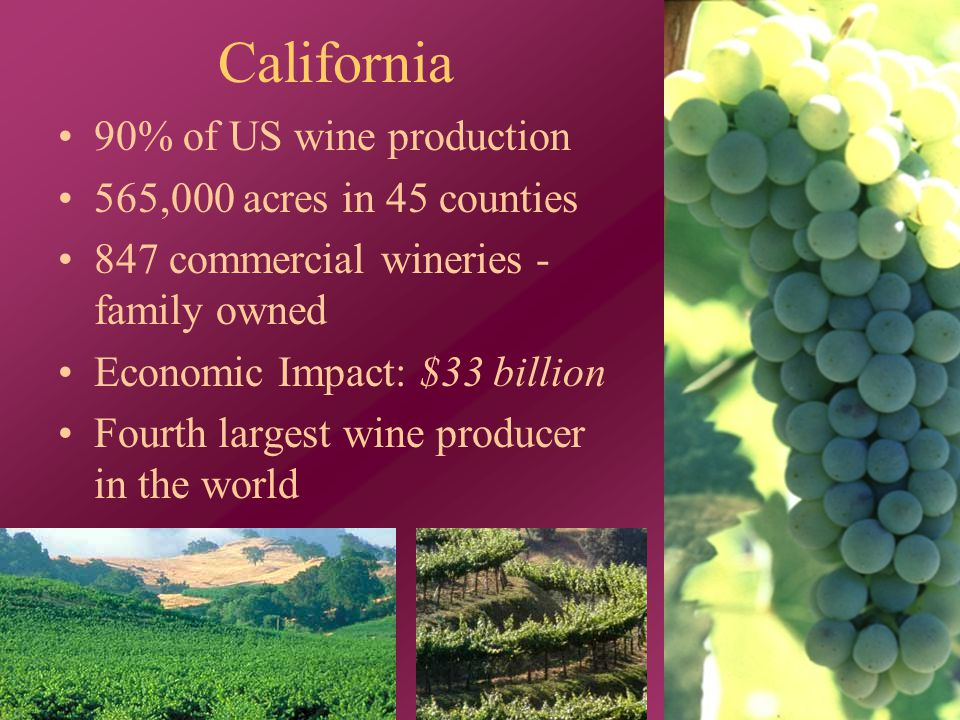 California 90% of US wine production 565,000 acres in 45 counties 847 commercial wineries - family owned Economic Impact: $33 billion Fourth largest wine producer in the world