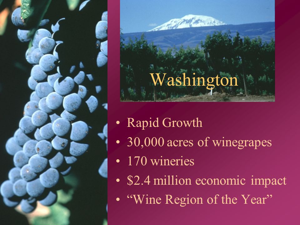 Washington Rapid Growth 30,000 acres of winegrapes 170 wineries $2.4 million economic impact Wine Region of the Year