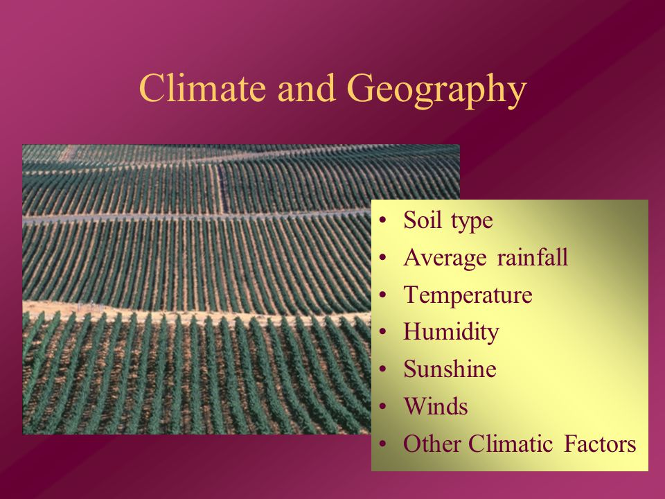 Climate and Geography Soil type Average rainfall Temperature Humidity Sunshine Winds Other Climatic Factors