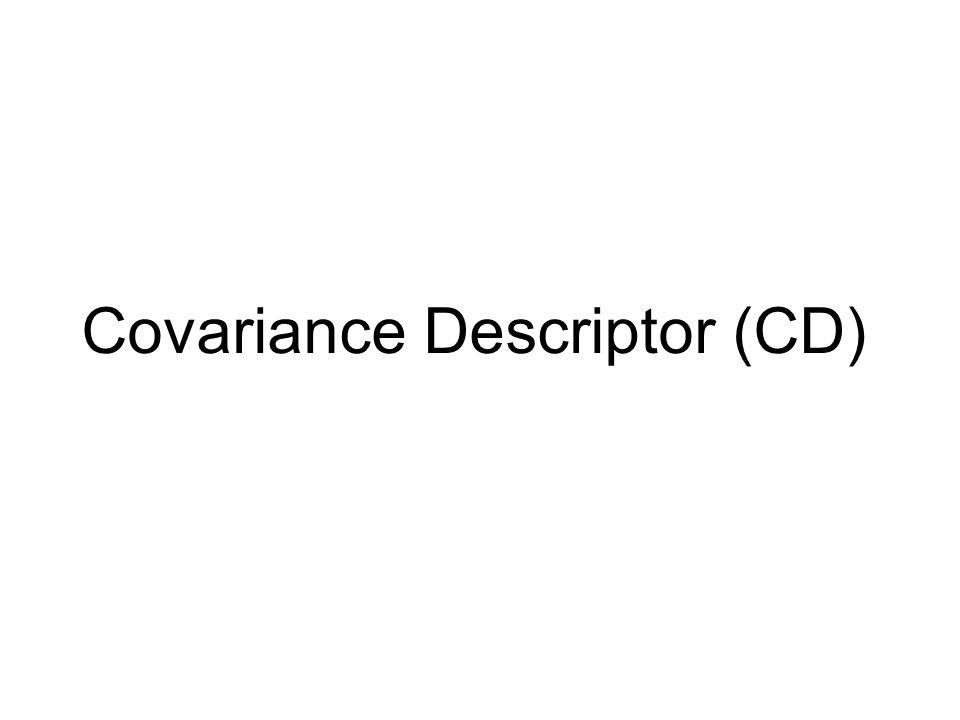 Covariance Descriptor (CD)
