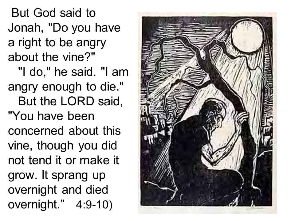 But God said to Jonah, Do you have a right to be angry about the vine? I do, he said.