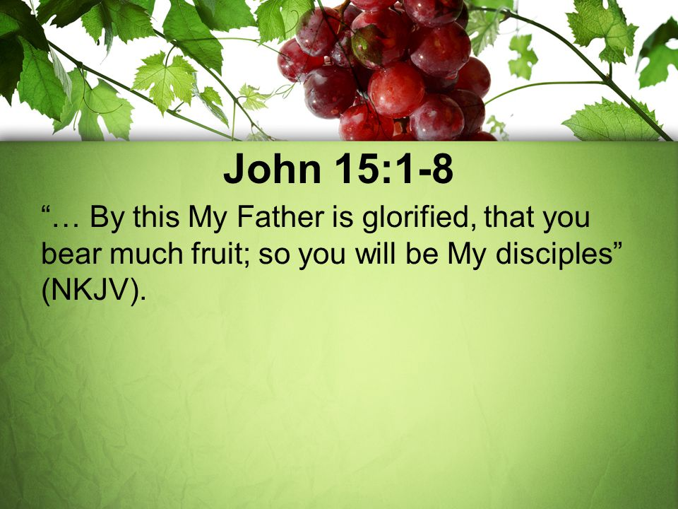 "John 15:1-8 ""… By this My Father is glorified, that you bear much fruit; so you will be My disciples"" (NKJV)."