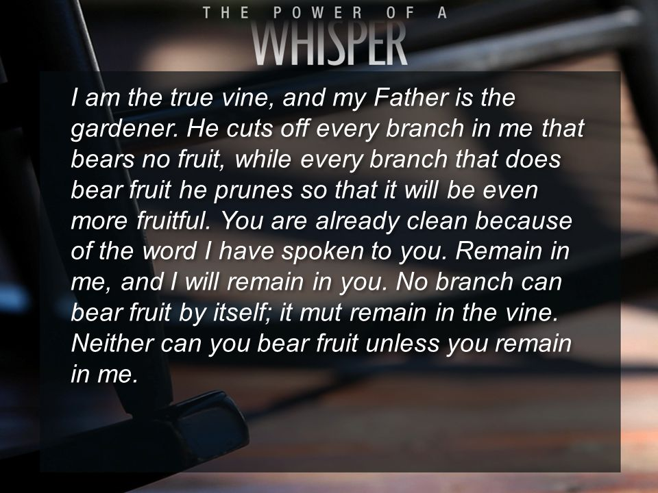 I am the true vine, and my Father is the gardener. He cuts off every branch in me that bears no fruit, while every branch that does bear fruit he prun