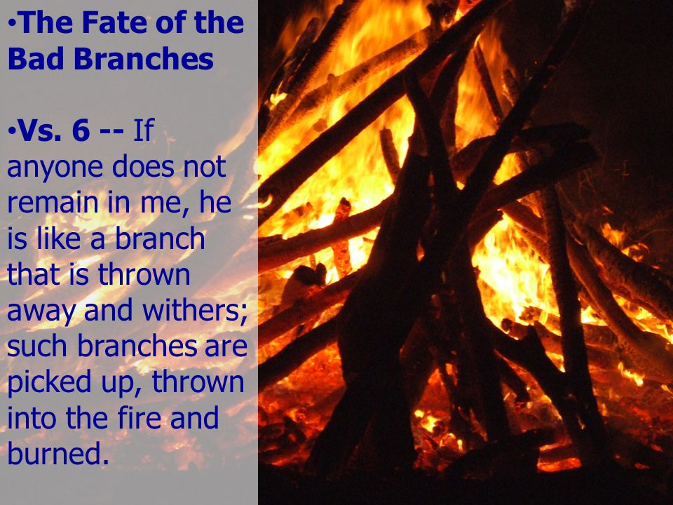 The Fate of the Bad Branches Vs.