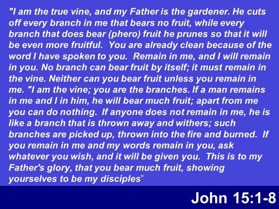 John 15:1-8