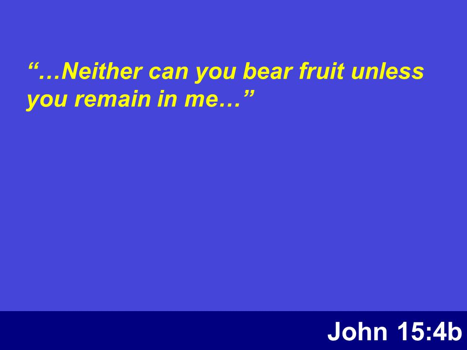 """John 15:4b """"…Neither can you bear fruit unless you remain in me…"""""""