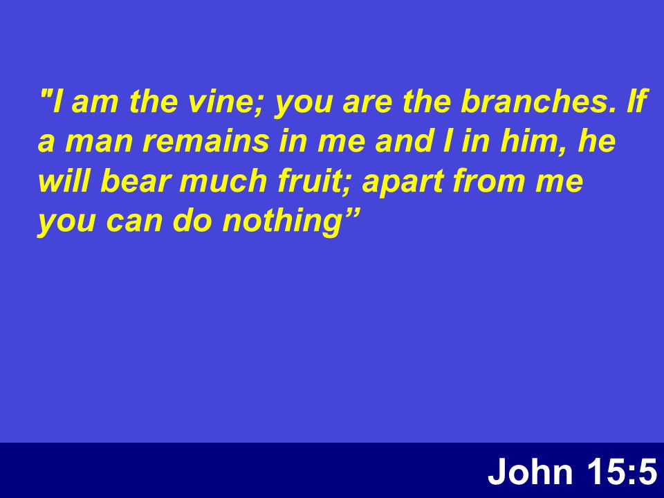 John 15:5 I am the vine; you are the branches.