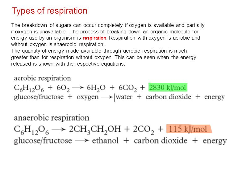 Types of respiration The breakdown of sugars can occur completely if oxygen is available and partially if oxygen is unavailable.