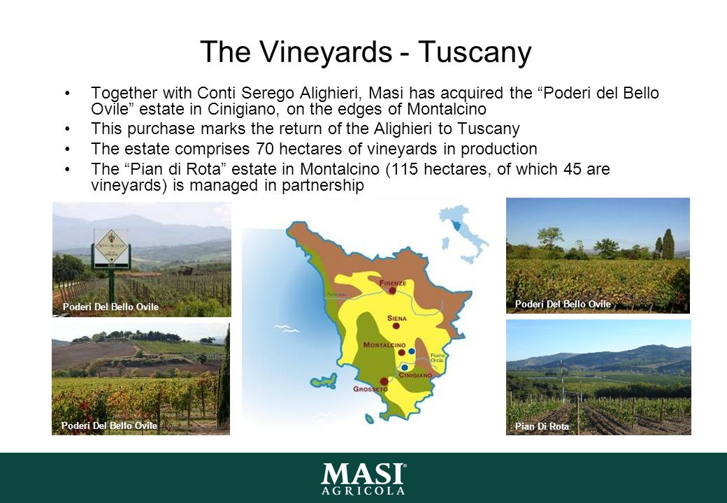 "The Vineyards - Tuscany Together with Conti Serego Alighieri, Masi has acquired the ""Poderi del Bello Ovile"" estate in Cinigiano, on the edges of Mont"