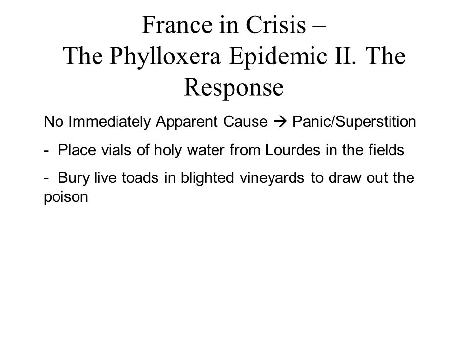 France in Crisis – The Phylloxera Epidemic II.