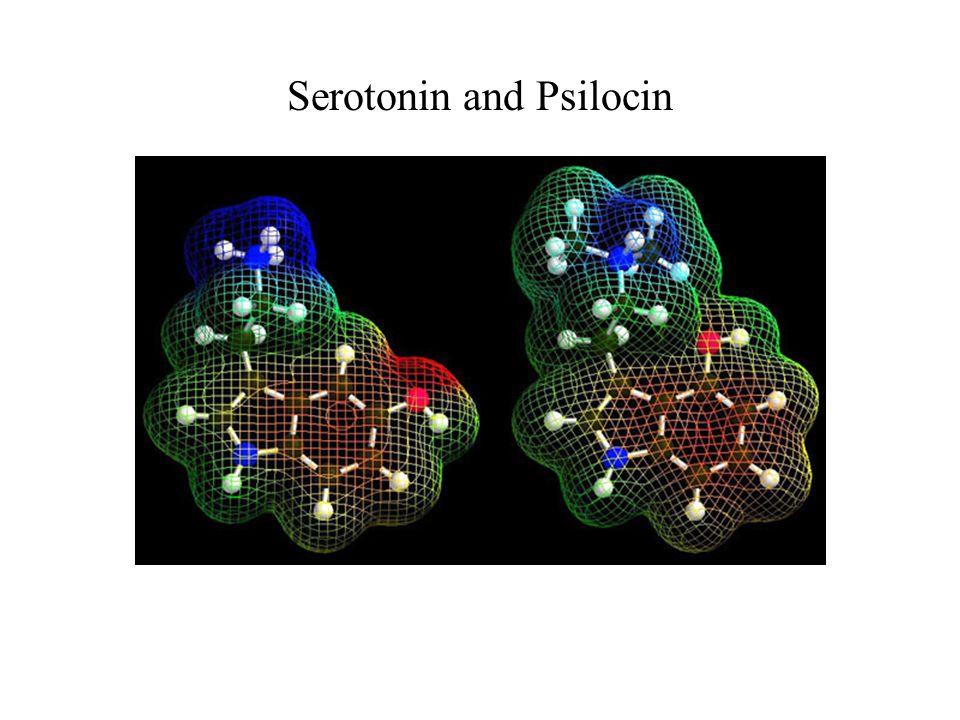 Serotonin and Psilocin