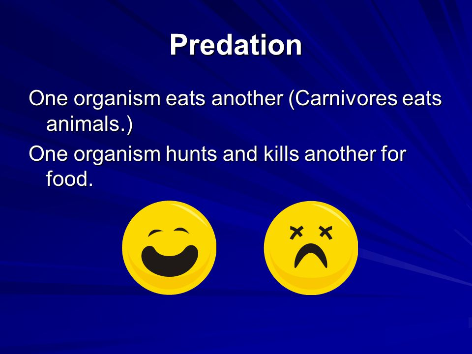 Predation One organism eats another (Carnivores eats animals.) One organism hunts and kills another for food.