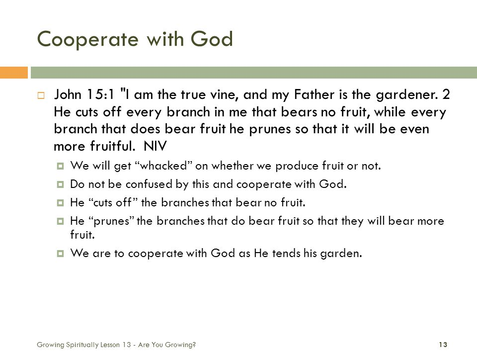 Cooperate with God  John 15:1 I am the true vine, and my Father is the gardener.