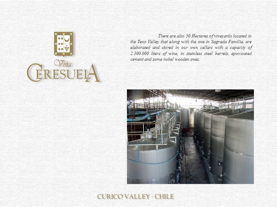In the cellars of the Ceresuela Vineyard you can find antique noble wooden barrels rescued from the first cellar after the fire in 1994.