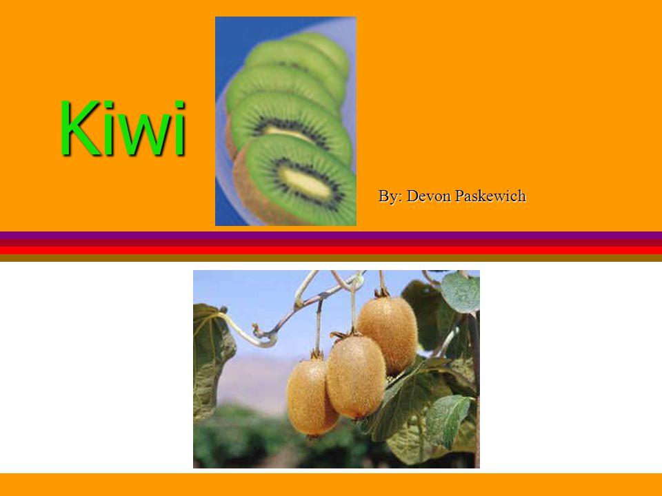 Kiwi By: Devon Paskewich