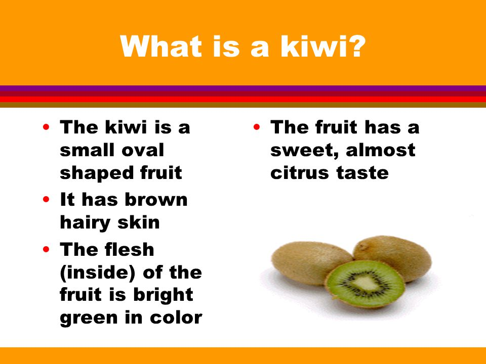What is a kiwi.