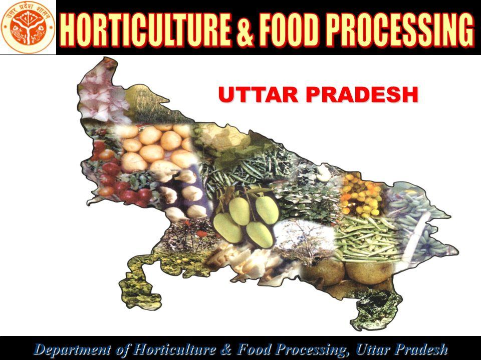 Department of Horticulture & Food Processing, Uttar Pradesh UTTAR PRADESH