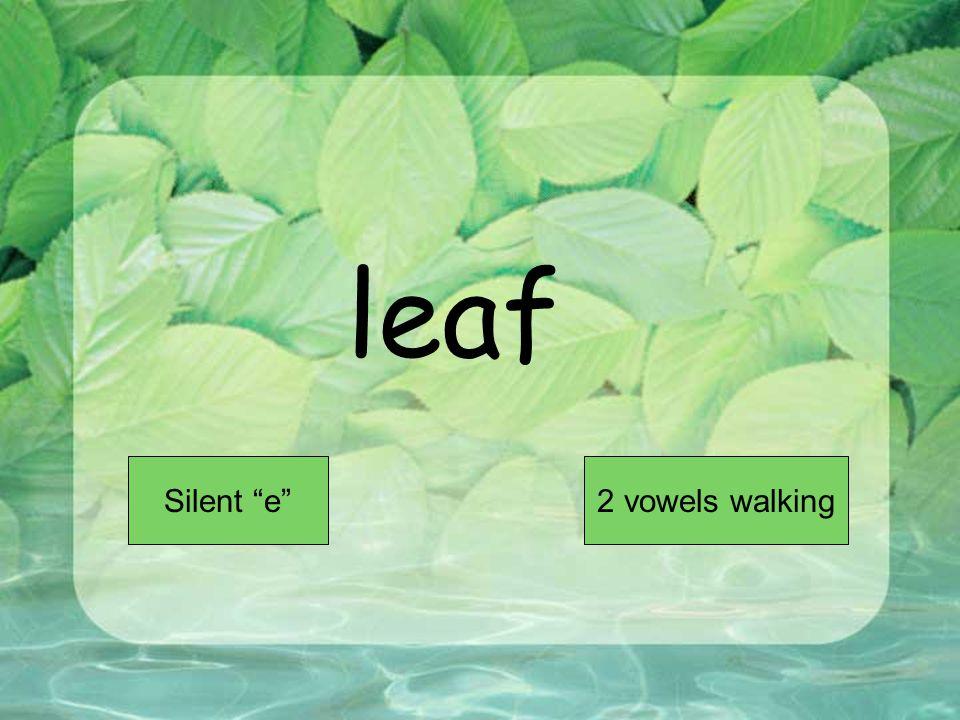 leaf Short VowelLong Vowel