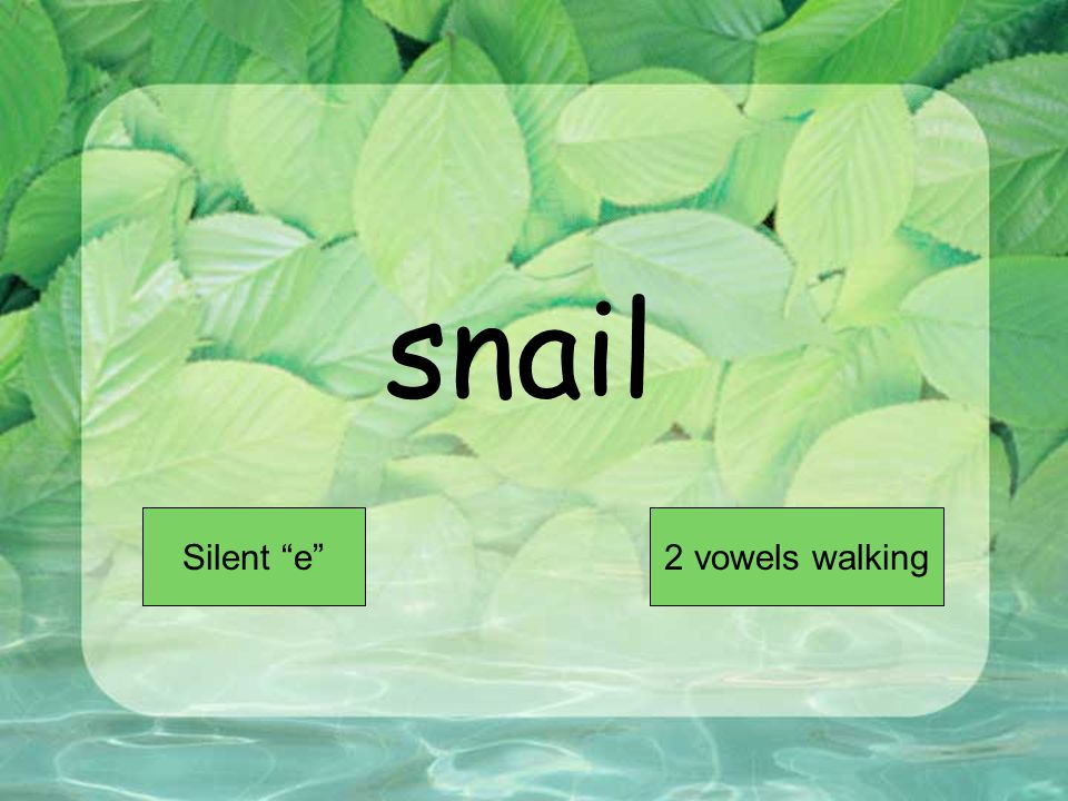 snail Short VowelLong Vowel