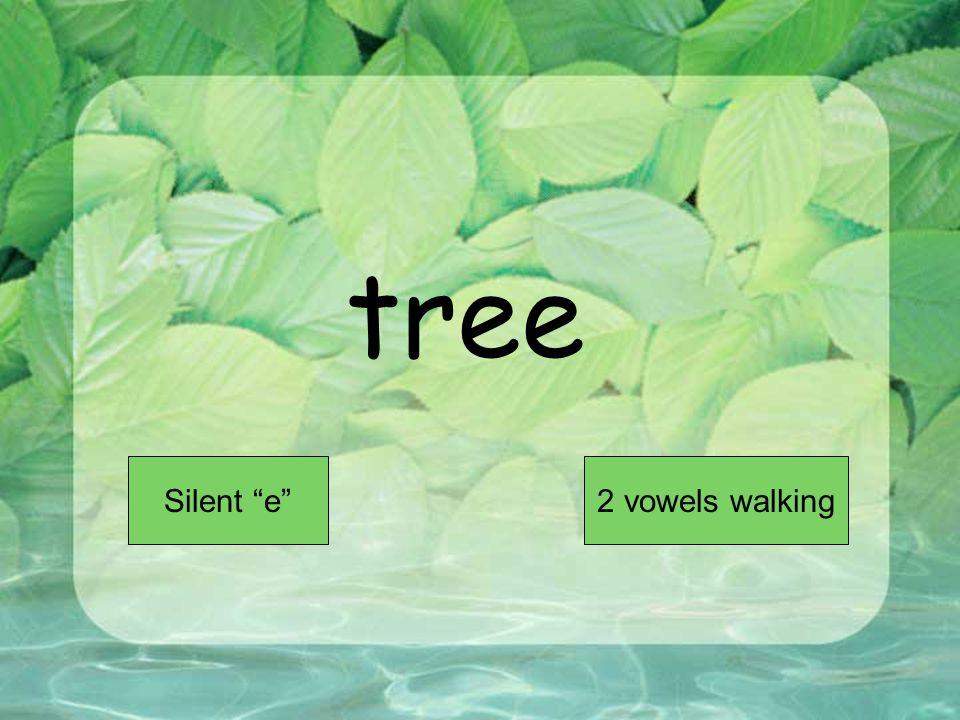 tree Short VowelLong Vowel