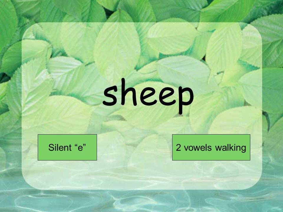 sheep Short VowelLong Vowel