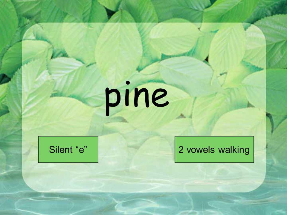 pine Short VowelLong Vowel