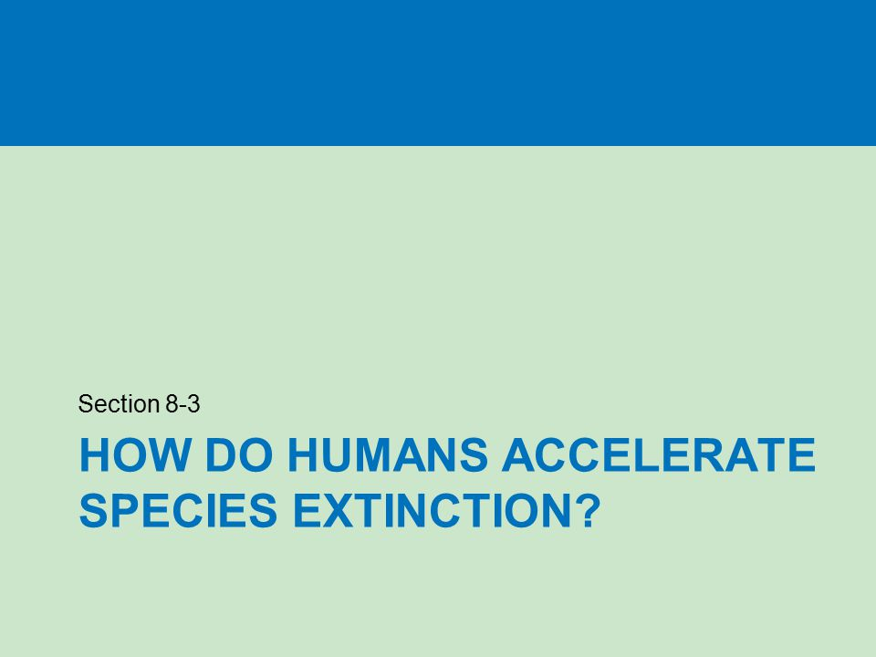HOW DO HUMANS ACCELERATE SPECIES EXTINCTION? Section 8-3