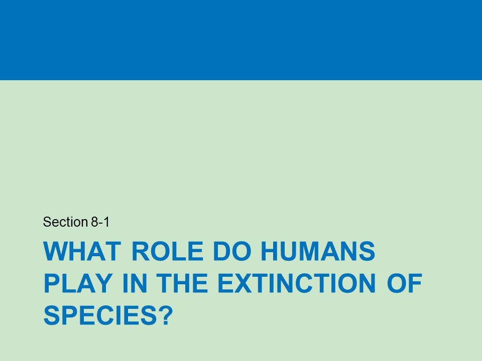 WHAT ROLE DO HUMANS PLAY IN THE EXTINCTION OF SPECIES? Section 8-1