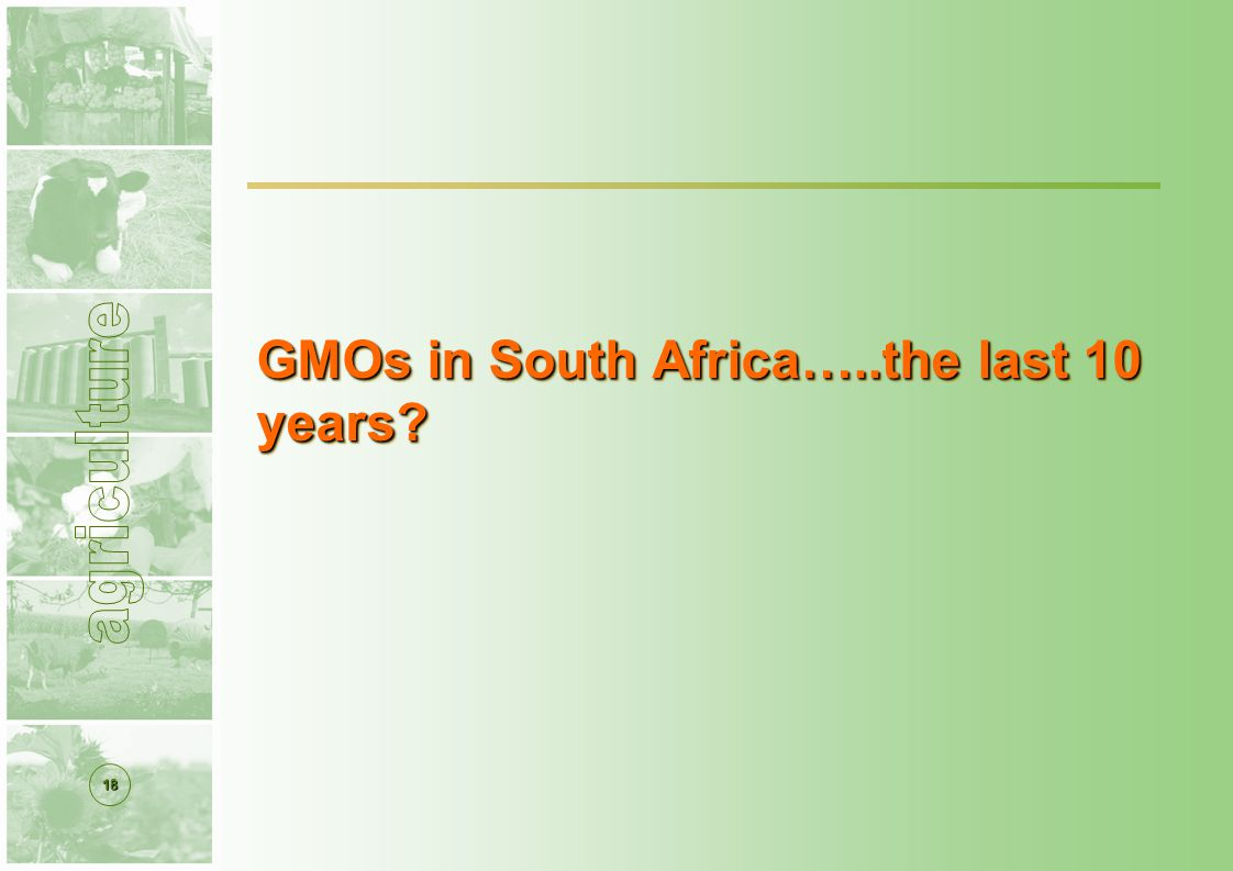 18 GMOs in South Africa…..the last 10 years
