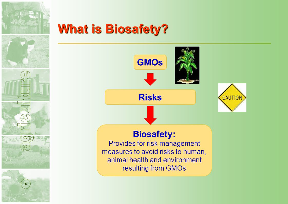 4 What is Biosafety.