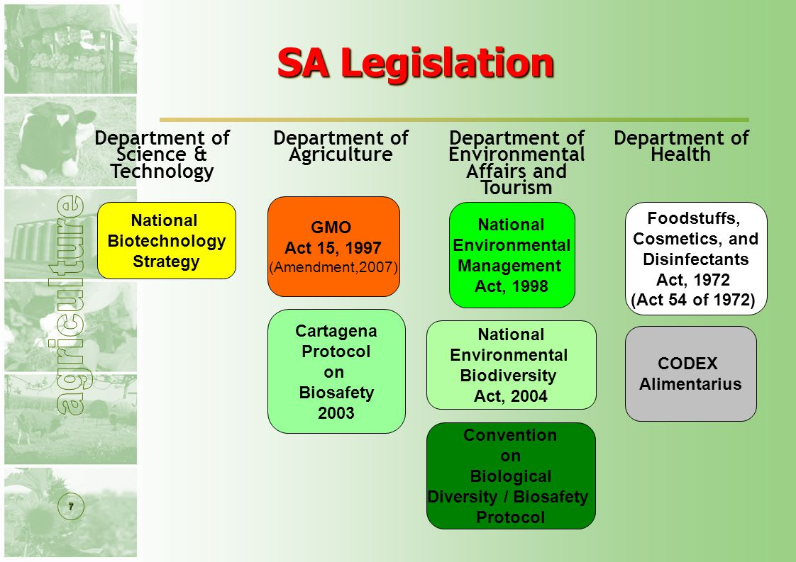 7 National Environmental Management Act, 1998 SA Legislation SA Legislation GMO Act 15, 1997 (Amendment,2007) National Environmental Biodiversity Act, 2004 Convention on Biological Diversity / Biosafety Protocol Foodstuffs, Cosmetics, and Disinfectants Act, 1972 (Act 54 of 1972) CODEX Alimentarius Cartagena Protocol on Biosafety 2003 National Biotechnology Strategy Department of Agriculture Department of Environmental Affairs and Tourism Department of Health Department of Science & Technology